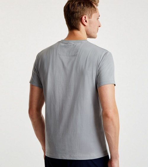 Hackett London Camiseta Aston Martin Gris espalda